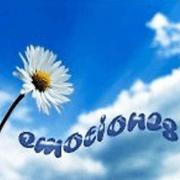 www.emocionestlp.com