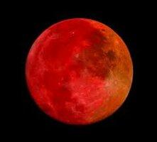 luna roja.jpg