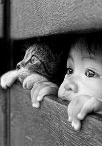 niño y gato tierna.jpg